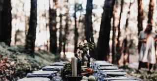 Réception en extérieur nature et foret